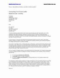 Executive Summary Resume Samples Unique It Security Consultant Cover