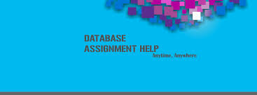 database assignment help database homework help database  database assignment help