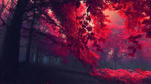Dark Red Autumn Forest, HD Nature, 4k ...
