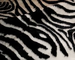 luxe faux hide 4 ft x 5 ft black white zebra indoor area