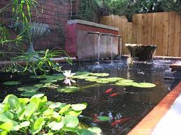 Small Picture Small Garden Pond Design CoriMatt Garden