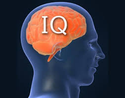 Image result for IQ is inherited, suggests twin study