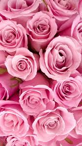 iphone 5 background girly. Exellent Girly Pink Roses Wallpaper With Iphone 5 Background Girly B