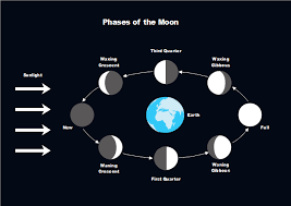 Earth Moon Venn Diagram Moon Phases Free Moon Phases Templates