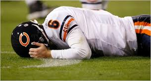 Chicago Bears 2010 Season Preview The New York Times