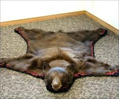 polar bear rug with head skin rugs full size of taxidermy black for polar bear rug with head faux black image bearskin
