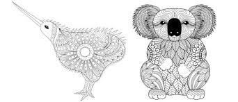 Small Picture Kiwi and koala colouring pages