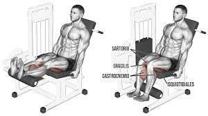 Curl de piernas sentado en máquina ¿Cómo hacerlo bien?