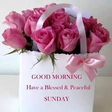 Blessed Sunday Quotes Simple Blessed Sunday Quotes Images Therandom Vibez Flickr