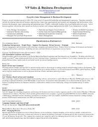 Sample Resume Objectives For Business Development Valid