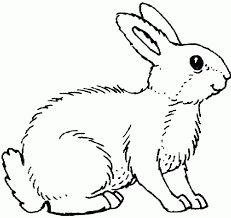 Displaying 151 rabbit printable coloring pages for kids and teachers to color online or download. Rabbit Coloring Pages Coloring Home