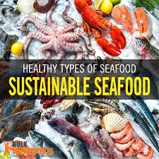 seafood diet benefits Archives ...