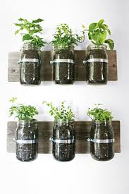 best indoor plants for office. Intriguing Plants Glass Jars Mar Ways To Use In Best Indoor For Office
