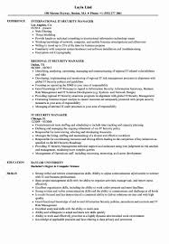 Technical Lead Resume Information System Manager Resume Awesome Resume Sample Java 23