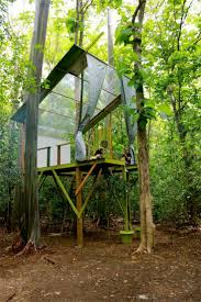 An artist crafts a sustainable tree house in the Puerto Rican tropics as an  inventive take