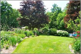 green yard ideas of nice gardens