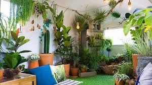 apartment gardening garden season