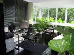 office indoor plants. Indoor Plants In The Office : Good For Your