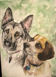 about the pet portraits kiara and cosmo 2016 watercolor painting