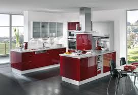 Nice Modern Kitchen Design Oceansafaris New Nice Kitchen Designs Photo