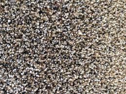 tan carpet floor. Carpet Specials Tan Floor