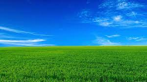 Free download PC Wallpapers HD 1080P ...