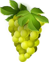 grapes clipart png. grape clipart png image 03 165x210 - transparent free images grapes png