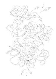 Botany Coloring Pages Botany Coloring Pages Dandelion Coloring Page