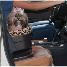 happy dog in a chocolate jaguar 17 bucket booster dog car seat by pet gear