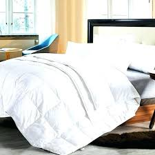 down comforter cover do you