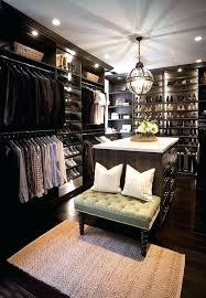 closet lighting ideas. Closet Lighting Battery Ideas Custom Walk In Features Dark Stained Built Ins Boasting Shelves .