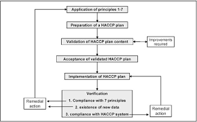 Haccp Plan Template Analysis On Shrimps And Fish Processing Assignment Point