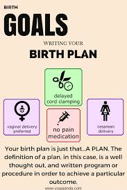 Birth Plan Guide Birth Plans Do You Really Need One Labor And Birth Pinterest