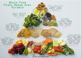 Plant Based Diet Chart Whole Food Plant Based Diet Pyramid For Optimum Health