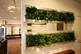 Vertical Kitchen Garden Kitchen Smart Hanging Hydroponic Kitchen Garden Herbs For Indoor