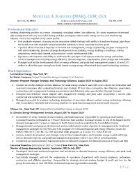 E Page Cv Consulting Resumes Examples Best Resume Management