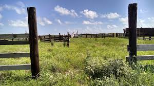 wooden farm fence. Free Images : Landscape, Tree, Grass, Fence, Architecture, Sky, Wood, Field, Farm, Prairie, Countryside, Old, Scenic, Pasture, Livestock, Ranch, Usa, Wooden Farm Fence