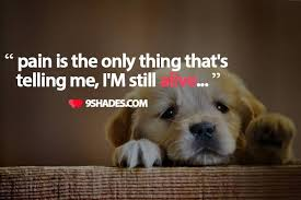 Popular Sad Life Quotes And Sayings About Pain Golfian Amazing Pain And Life Quotes