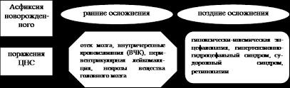 Реферат Внутриутробная гипоксия Асфиксия и реанимация  Рисунок № 2