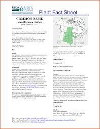 Sample Information Sheet Templates Fact Sheet TemplateSample Fact Sheet Templatejpg24e24b24 9