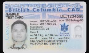 Tranbc Acceptable Bc Card Information Care More Your Form – Card Services And