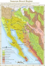 Tucson Elevation Chart Sonoran Desert Sonoran Desert Region