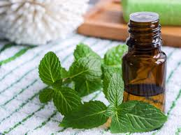 Mcx Mentha Oil Chart Rate Signal Mentha Oil Prices Slip On Muted Demand The Economic Times