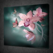 pink orchid erfly modern calm canvas print picture wall art