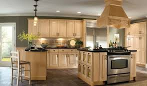 Light Colored Kitchen Cabinets Cool Light Colored Kitchen Cabinets Photo Gallery