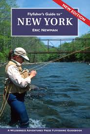 Fly Fishers Guide To New York The Beaverkill Angler