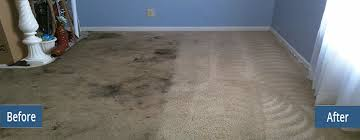 rust stain removal on carpet syosset ny coffee stain in carpet removal syosset ny carpet cleaning syosset ny silk wool rug cleaning syosset ny