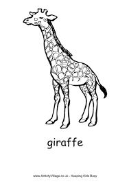 Small Picture Giraffe Colouring Page