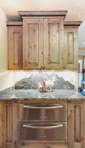rustic cabinet doors ideas. kitchen cool rustic cabinet doors design ideas modern h