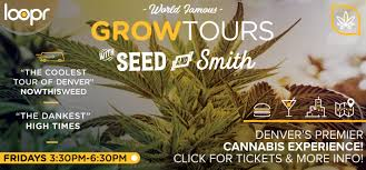 hands on seed to shelf grow tour